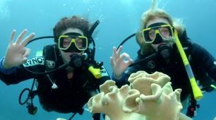 Great Barrier Reef scuba diving