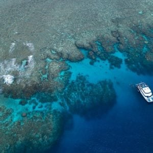 Great Barrier Reef, Reef Experience