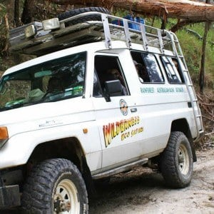 4WD Eco Safaris