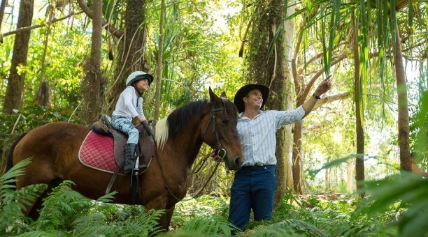 Rainforest Horse Ride