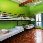 Byron Beach Resort - 4 Bed Dorm