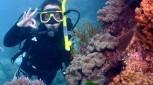 3 Day Top Deck Club Scuba Dive