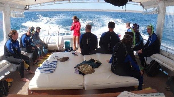 snorkel tour Ningaloo Reef, Western Australia