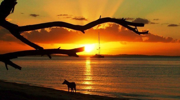 Sunset Fraser Island Queensland Australia