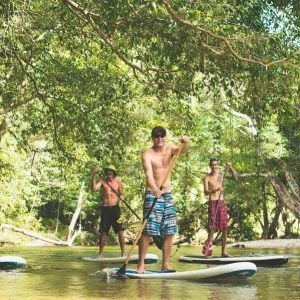 Rainforest River Standup Paddle Boarding