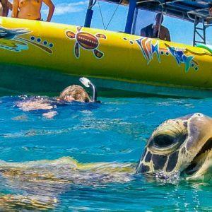 Ocean Rafting Whitsundays