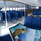Reef Experience interior