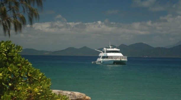 Frankland Island Cruise, North Queensland Australia