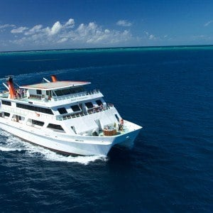 Top Deck Club Reef Sleep