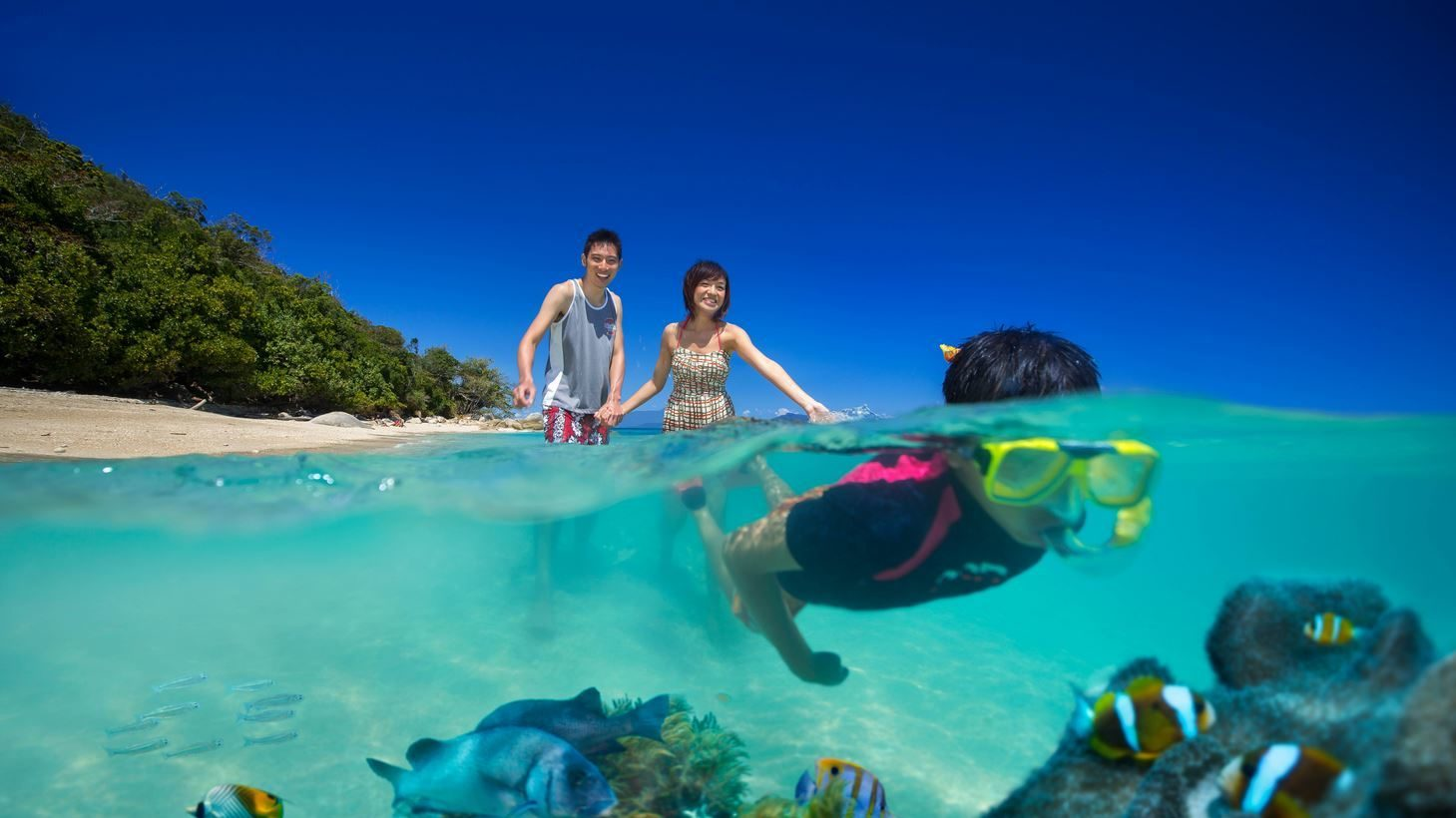 Fitzroy Island Tours From Port Douglas