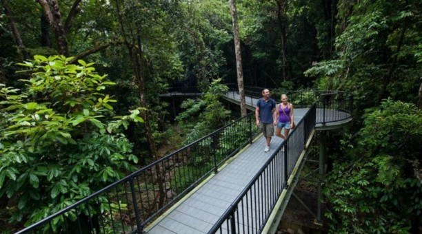 Cape Tribulation tour, North Queensland Australia