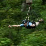 Daintree Jungle Surfing and Reef Cruise 2 day Adventure