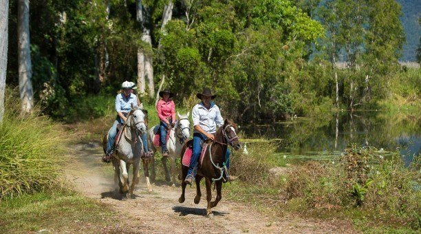 cairns horse riding