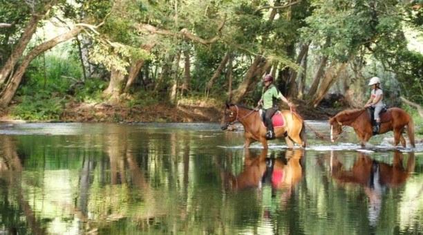 North Queensland private Horse riding Tour