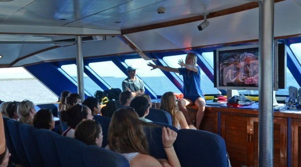 Marine Biologist Great Barrier Reef presentation on Reef Experience