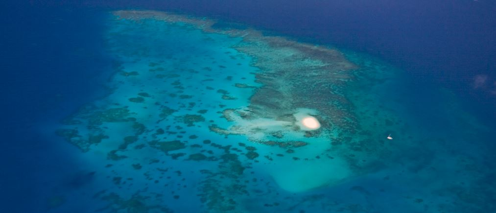 Cairns Dive Sites