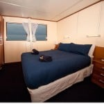 reef-encounter-double-stateroom