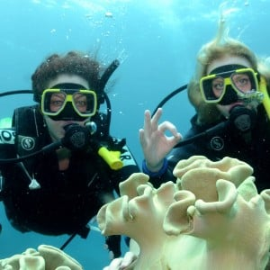 Top Deck Club Scuba and Daintree Rainforest (3 Days)