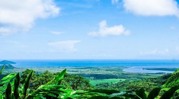 Alexandra Lookout, Daintree Rainforest