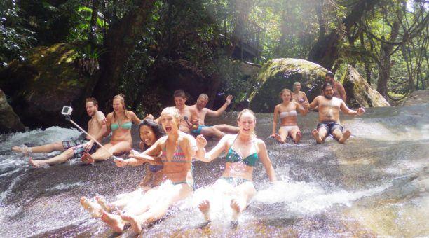 Fun, Falls & Forest