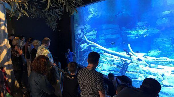 River Monsters Presentation