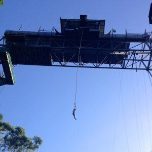 The one and only Bungy site in Australia is in Cairns.