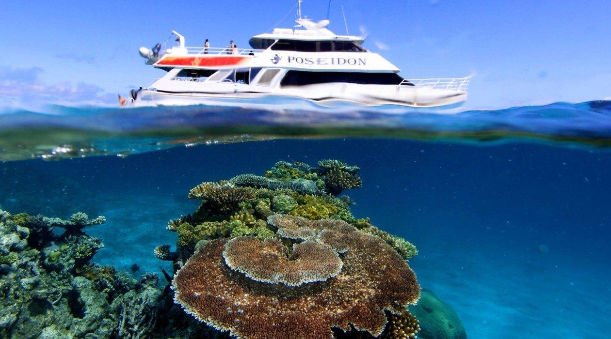 Port Douglas Reef Cruise Cairns Reef