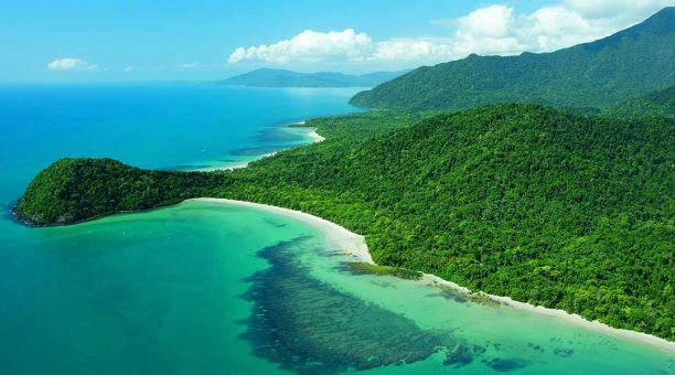 Cape Tribulation and Daintree Wilderness Tour