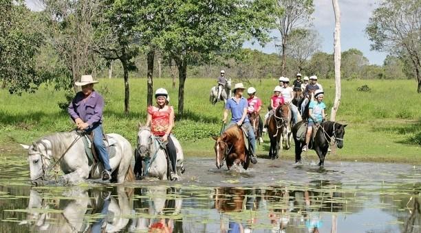Rainforest Horse Riding