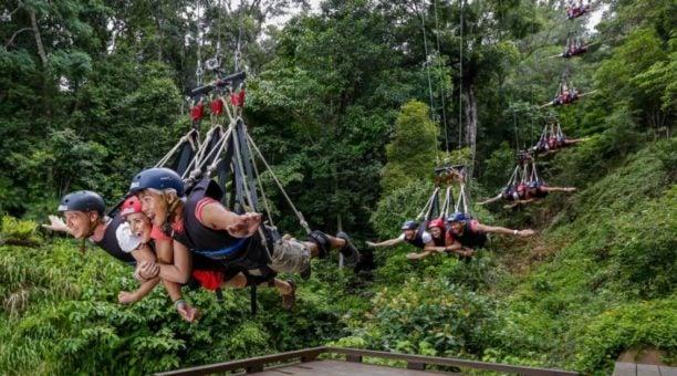 Minjin swing North Queensland Australia