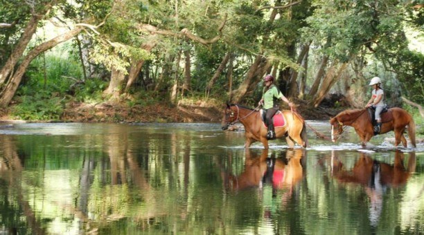North Queensland private Horse riding Tour
