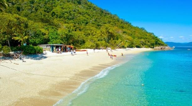 Fitzroy Island Queensland: Fitzroy Island Full Day Trip