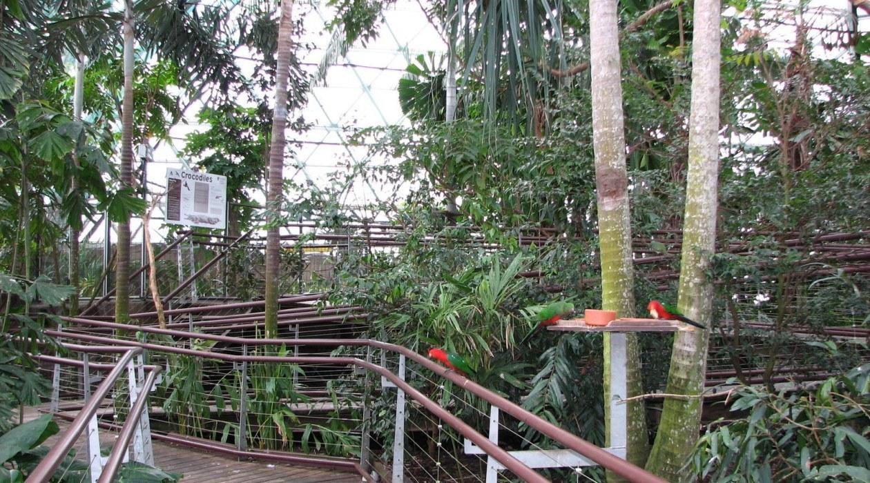 Cairns Wildlife Dome Cairns Tour