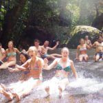 Rainforest and Waterfall Tour