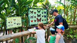 The Australian Butterfly Sanctuary