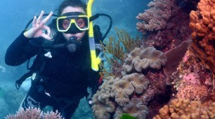 3 Day Top Deck Scuba Dive