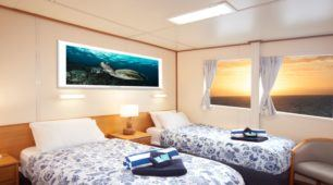 Twin Bed Stateroom Cabin - Reef Encounter