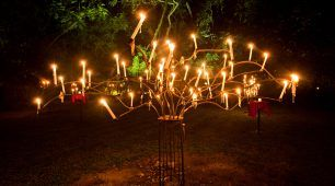 Flames of the Forest Candelabra