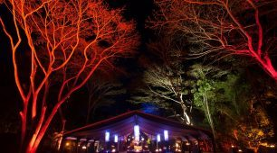 Flames of the Forest silk lined marquee