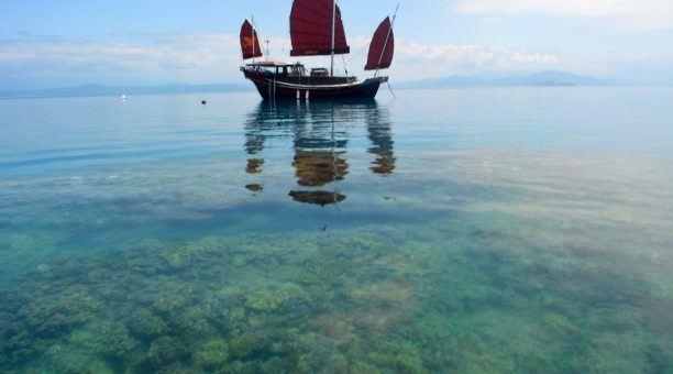 Shaolin Great Barrier Reef Day