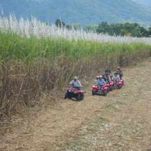 Quad Bike Tour Cairns