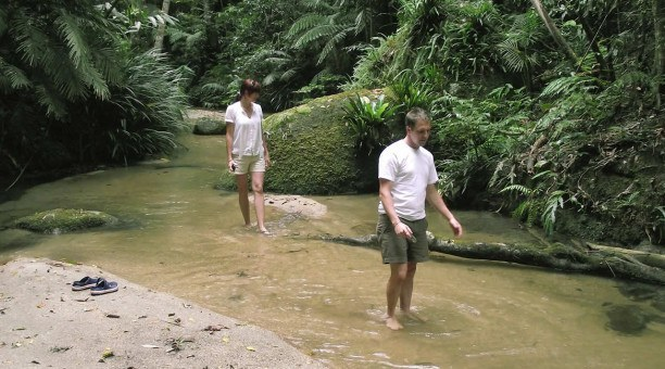 Cairns eco Tour fresh water creek, North Queensland Australia