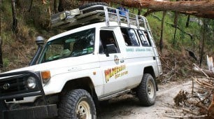 Wilderness Eco Safari Cairns North Queensland Australia