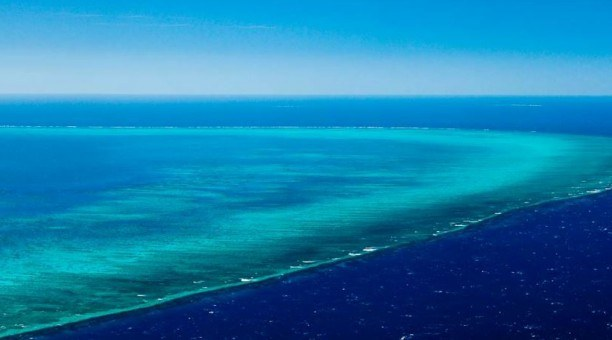 Arlington Reef, Great Barrier Reef Australia