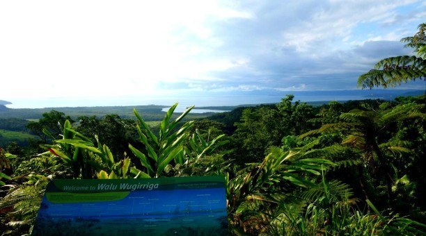 Daintree Lookout, Queensland