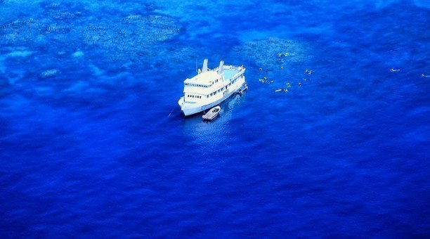 Budget Great Barrier Reef tour
