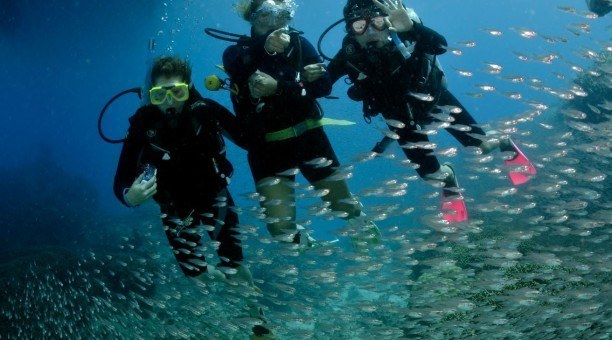 try a resort dive on Australia's Great Barrier Reef