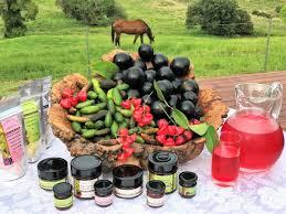 Cairns' Tablelands Food & Wine Tour