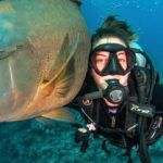 5 Day Stress and Rescue Dive Course