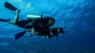 resort dive
